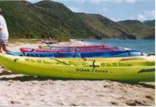 Turtle Tours Snorkeling and Kayaking Adventure